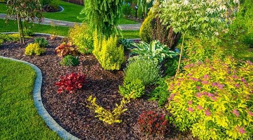 Садоводство и ландшафтный дизайн