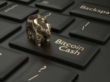 Что такое Bitcoin Cash и что ждет эту криптовалюту