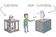 custodial wallet or non-custodial wallet